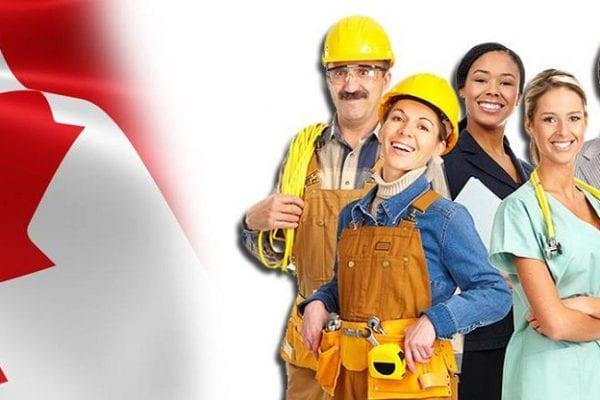 Thị trường lao động Canada 2019
