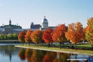 định cư Canada diện tay nghề là cơ hội cho người thực sự biết trân trọng