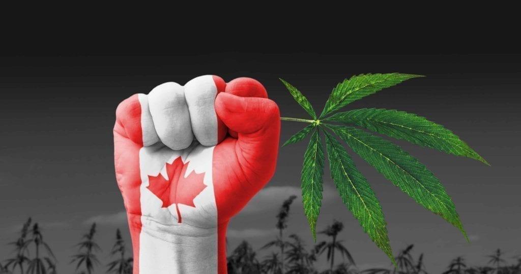 Điều kiện sức khoẻ xklđ Canada