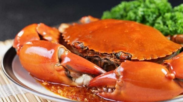 ăn gì ở singapore, đi đâu ăn gì ở singapore, review đồ ăn singapore, đến singapore nên ăn gì, singapore có gì ăn, singapore có gì ăn ngon, nên ăn gì khi đến singapore