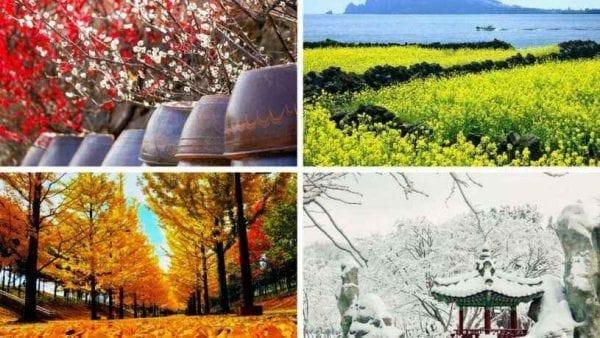 khí hậu hàn quốc như thế nào, khí hậu hàn quốc là gì, khí hậu hàn quốc hiện nay, khí hậu hàn quốc cuối tháng 10, khí hậu của hàn quốc, khí hậu ở hàn quốc như thế nào, khí hậu tại hàn quốc, thời tiết hàn quốc tháng 4, thời tiết hàn quốc tháng 3, thời tiết hàn quốc tháng 5, thời tiết hàn quốc tháng 6, thời tiết hàn quốc như thế nào, thời tiết hàn quốc trong năm, thời tiết bên hàn quốc, thời tiết ở hàn quốc như thế nào, thời tiết ở hàn quốc, thời tiết mùa xuân ở hàn quốc, thời tiết tháng 2 ở hàn quốc, thời tiết tháng 2 tại hàn quốc, thời tiết tháng 3 ở hàn quốc, thời tiết tháng 3 tại hàn quốc, thời tiết tháng 5 ở hàn quốc, thời tiết tháng 6 ở hàn quốc, thời tiết tháng 6 tại hàn quốc
