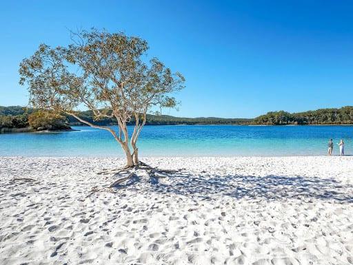 Tận hưởng vẻ đẹp của đảo Fraser