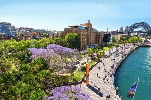 Mỗi mùa ở thành phố Sydney mang một vẻ đẹp riêng