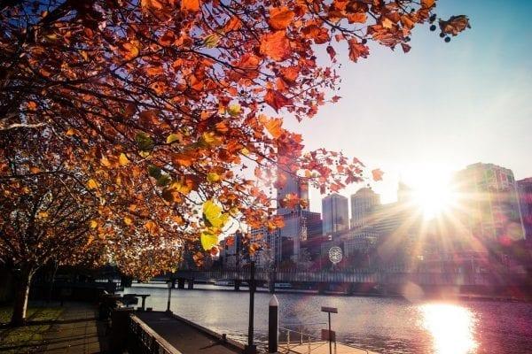 Mùa hè tại Úc với bầu trời trong xanh và ngập tràn nắng vàng
