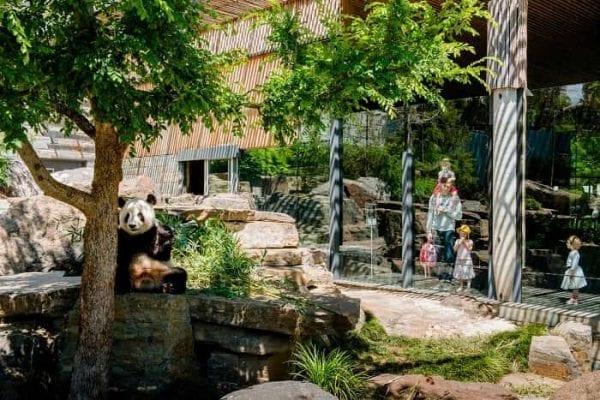 Sở thú Adelaide