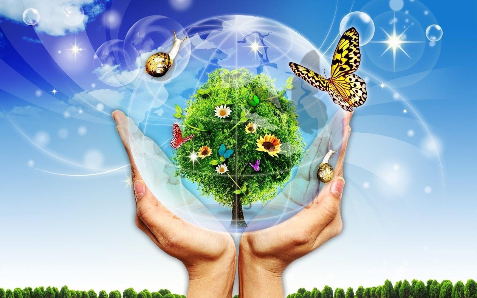 môi trường ở nhật bản, ô nhiễm môi trường ở nhật bản, môi trường nhật bản, bảo vệ môi trường ở nhật bản, nhật bản bảo vệ môi trường, cách người nhật bảo vệ môi trường, chính sách bảo vệ môi trường của nhật bản, biện pháp bảo vệ môi trường của nhật bản, người nhật bảo vệ môi trường, cách bảo vệ môi trường của người nhật, bài học bảo vệ môi trường của nhật bản, vấn đề môi trường ở nhật bản, môi trường sống ở nhật bản