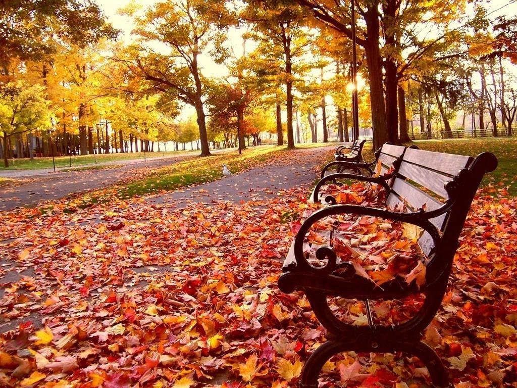 mùa thu hàn quốc, mùa thu ở hàn quốc, mùa thu hàn quốc tháng mấy, style mùa thu hàn quốc, mùa thu hàn quốc vào tháng mấy, mùa thu hàn quốc có lạnh không, mùa thu hàn quốc bắt đầu từ tháng mấy, mùa thu hàn quốc bao nhiêu độ, mùa thu hàn quốc có gì đặc biệt, mùa thu hàn quốc tháng nào đẹp nhất, mùa thu hàn quốc là tháng mấy, mùa thu ở hàn quốc là tháng mấy, mùa thu ở hàn quốc có lạnh không, mua bánh trung thu hàn quốc ở đâu, mùa thu ở hàn quốc vào tháng mấy, mùa thu lá vàng hàn quốc tháng mấy, mùa thu hàn quốc từ tháng mấy, mùa thu của hàn quốc vào tháng mấy, mùa thu hàn quốc đi đâu, hình mùa thu hàn quốc, lịch mùa thu hàn quốc 2019, mùa thu ở hàn quốc như thế nào, mùa thu hàn quốc vào tháng nào, review mùa thu hàn quốc, stt mùa thu hàn quốc, mùa thu hàn quốc tháng 10, mùa thu hàn quốc thời tiết, thơ mùa thu hàn quốc, mùa thu lá đỏ hàn quốc vào tháng mấy, mùa thu ở hàn quốc bắt đầu từ tháng mấy