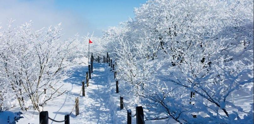 mùa đông hàn quốc, mùa đông ở hàn quốc, mùa đông hàn quốc vào tháng mấy, mùa đông ở hàn quốc như thế nào, mùa đông ở hàn quốc là tháng mấy, hình ảnh mùa đông ở hàn quốc, mùa đông hàn quốc tháng mấy, hàn quốc vào mùa đông, mùa đông tại hàn quốc, mùa đông của hàn quốc vào tháng mấy, mùa đông của hàn quốc, mùa đông hàn quốc có gì, mùa đông hàn quốc kéo dài bao lâu, mùa đông hàn quốc bắt đầu từ tháng mấy