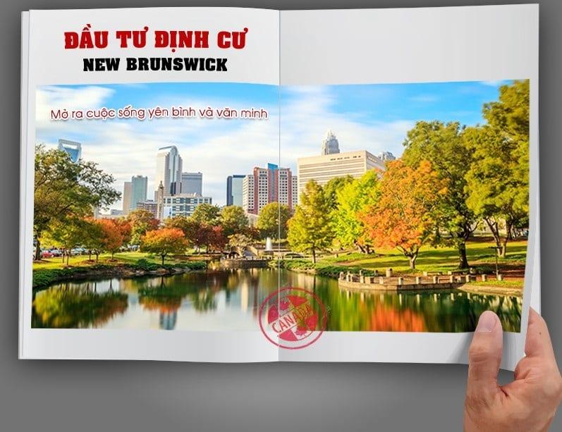 định cư new brunswick, đầu tư định cư new brunswick, chính sách định cư new brunswick, định cư tỉnh bang new brunswick, chính sách định cư bang new brunswick, định cư tại new brunswick, định cư canada new brunswick