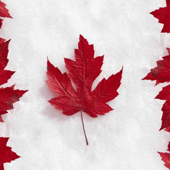 biểu tượng canada, biểu tượng của canada, biểu tượng của canada là gì, biểu tượng cờ canada, biểu tượng lá phong của canada, lá biểu tượng canada, biểu tượng nước canada, biểu tượng của đất nước canada là gì, biểu tượng đất nước canada, cây biểu tượng của canada, con vật biểu tượng canada, lá cây biểu tượng canada, biểu tượng quốc kỳ canada, biểu tượng lá phong canada, con vật biểu tượng của canada