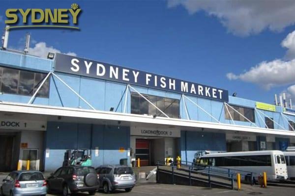 sydney, sydney là thủ đô của nước nào, thành phố sydney, thành phố sydney của úc, sydney city, syney, cảng sydney, sydney australia, thanh pho sydney, sydney là ở đâu, sydney úc, sydney ở đâu, cuộc sống ở sydney