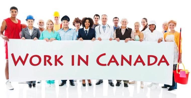 việc làm canada, tìm việc làm ở canada, việc làm ở canada, việc làm tại canada, xin việc làm ở canada, việc làm tại canada 2020, làm việc tại canada như thế nào, xin việc làm tại canada, tìm việc làm tại canada, kiếm việc làm ở canada, đi làm việc tại canada, việc làm tại canada 2019, tìm việc làm canada, việc làm canada 2019, đi làm việc ở canada, qua canada làm việc gì, xin việc làm canada, làm việc gì ở canada, cơ hội việc làm canada, việc làm canada 2021, việc làm bên canada